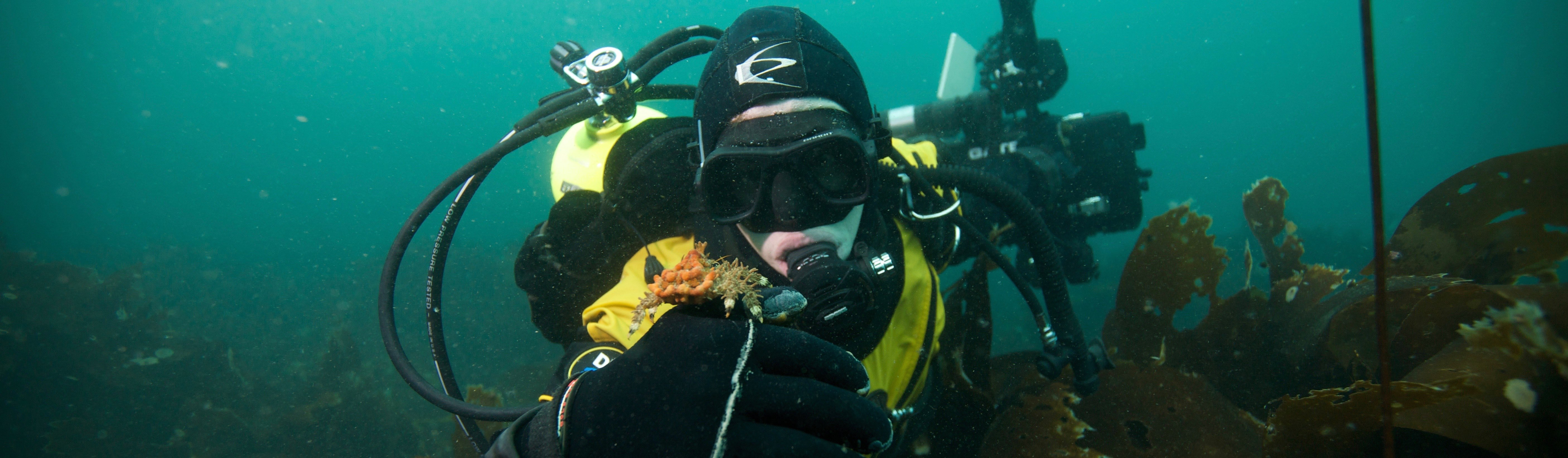 Develop Scientific Diving Skills